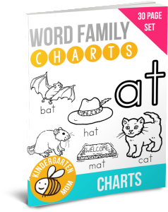 WordFamilyChartsBook