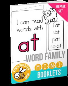 WordFamilyMinibookseBook