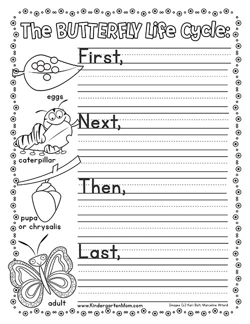 photograph about Butterfly Life Cycle Printable named Butterfly Lifetime Cycle Printables - Kindergarten Mother