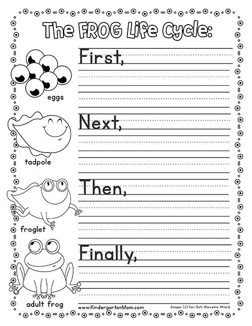 Frog Life Cycle Printables - Kindergarten Mom