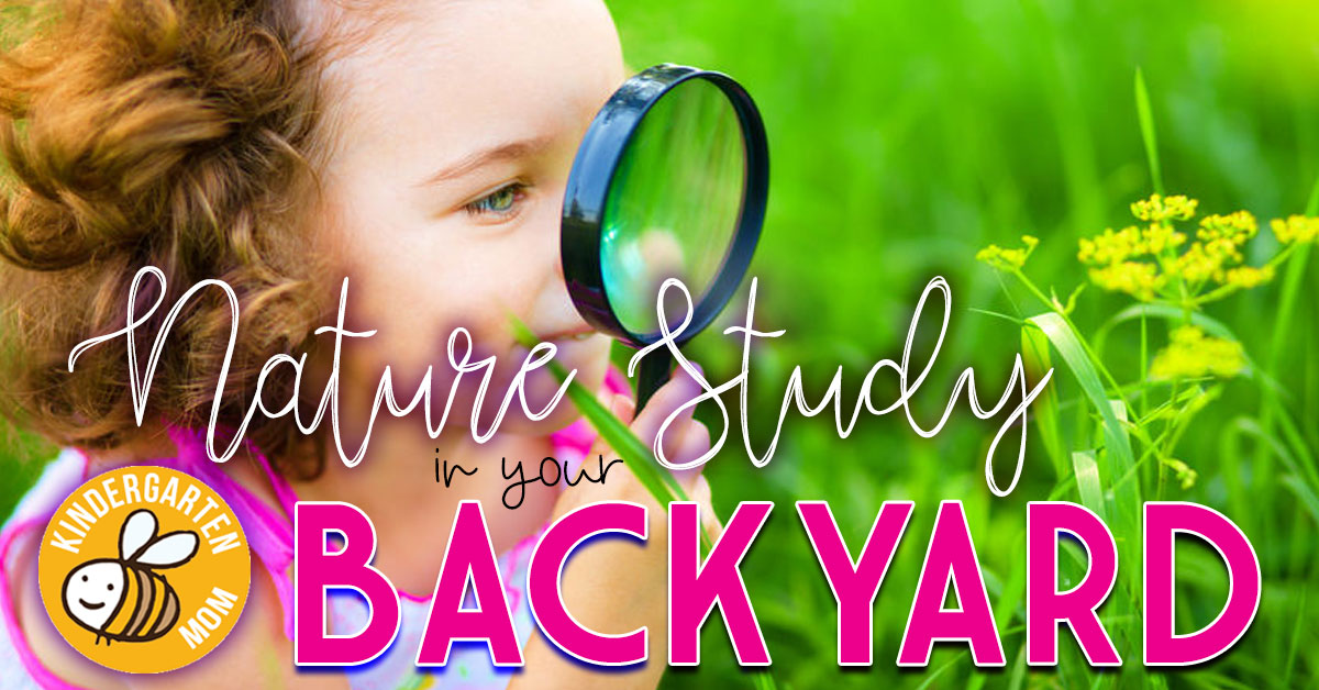 Backyard Nature Study: 3 Tips for Summer Learning
